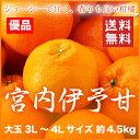 【送料無料】JAえひめ中央(中島産) 『宮内伊予甘』 優品 大玉 3L〜4Lサイズ(約4.5kg)