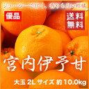 【送料無料】JAえひめ中央(中島産) 『宮内伊予甘』 優品 大玉 2Lサイズ(約10.0kg)