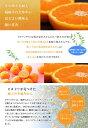 愛媛産 純粋百花蜂蜜150g 愛媛の春〜初夏の花蜜。クセの少ない味