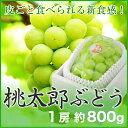 桃太郎ぶどう 岡山県産 香川県産 赤秀 約800g×1房 送料無料 ぶどう 葡萄 ブドウ