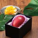 マンゴー みやざき完熟マンゴー 赤秀 3Lサイズ 450g以上 1玉 宮崎県産 JA宮崎経済連 送料無料 母の日 父の日 プレゼント