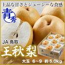 送料無料鳥取県奥大山コシヒカリ 5kg 赤袋鳥取県産コシヒカリ令和元年産 新米1等米