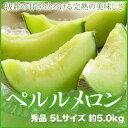 【送料無料】 JA岡山(牛窓産)  『ペルルメロン』  秀品 5Lサイズ 2玉入  (約5.0kg)