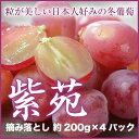 岡山県産 『紫苑』 摘み落とし 4パック (約200g×4) 種無しぶどう