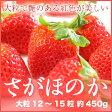 岡山県産 いちご 『さがほのか』   大粒 12〜15粒 約450g 化粧箱入り