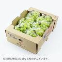 ぶどう シャインマスカット 晴王 赤秀 5〜8房 約5kg 岡山県産 JAおかやま 送料無料 お中元 葡萄 ブドウ