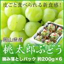 岡山県産 桃太郎ぶどう 詰み落としパック (約200g×6) 計1.2kg