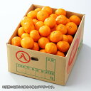 温州みかん  産地厳選  秀品 2Sサイズ  約10kg  送料無料 蜜柑 ギフト