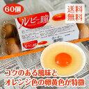 国産ブランド鶏卵 「ルビーの瞳」 60個(10個×6パック) 【大分県産 国内産 赤玉 赤卵 濃厚 こだわり 美味しいたまご 卵 リーズナブル】