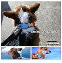 (3日以内の発送) 在庫販売 ワンタッチバックル S.MaQueen 20mm幅 犬の体重=16kgまでピュアカシミアパッド標準装備犬 首輪 中型犬 痛くない苦しくない首輪 迷子札日本製 犬の首輪 犬用首輪 クッション付