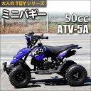 HAIGE ミニバギー 四輪バギー ATV 50cc 2サイクル ATV-5A【 送料無料 0113_flash 16 】