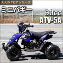 HAIGE ミニバギー 四輪バギー ATV 50cc 2サイクル ATV-5A【 送料無料 02P03Dec16 03 】