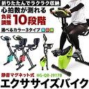 【4/25限定 P2倍】 エクササイズバイク HG-QB-J917B ライムグリーン フィットネスバ...