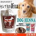 【セレブ犬の新常識】【送料無料・限定お得用セット】DOG H...
