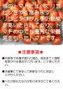 【ふるさと納税】★今、話題のスーパー食材もち麦!★100%熊本県産!希少な新品種キラリモチ 150g×7袋 坂本企画《30日以内に順次出荷(土日祝除く)》