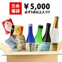 ショッピングビール 福袋 2020 送料無料 5千円福袋 お酒 2019 日本酒 ビール 飲み比べセット [ グルメ 誕生日 プレゼント 内祝い 記念品 ]