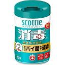 Scottie(スコッティ) ウェットティシュー 消毒 80枚 ボトル 本体 日本製紙クレシア【RCP】
