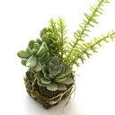 フェイクグリーン 多肉植物 ミニ 小さい インテリア おしゃれ 苔玉 人工観葉植物 フェイクな多肉の苔球 A