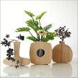 花瓶 天然木 一輪挿し 木製 花器 フラワーベース 花瓶 ガラス 試験管 花器 花瓶 おしゃれ フラワーベース ナチュラルウッド 花瓶 無垢 フラワーベース 一輪挿し インテリア雑貨 花瓶 ウッディーなユラユラベース ビーチ