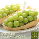 長野県産、山梨県産 シャインマスカット 1キロ (2房入り)ぶどうシャインマスカ