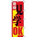 【のぼり「随時見学OK」】 幅600mm×高さ1800mm【業務用】【送料別】