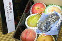 敬老の日果物詰合せ【フルーツBOX】ギフト通販 おじいちゃん・おばあちゃんに果物プレゼント。小箱