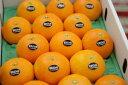 紅まどんな Mサイズのミニでお買い得!お歳暮に愛媛県ゼリーの様な食感が特徴の柑橘 約16玉前後
