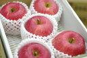 山形ふじりんご通販 朝日町・村山地域お歳暮サンふじを販売取寄。小箱 約5玉〜約6玉
