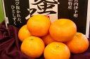 蜜るいよかん通販 愛媛県保内共選ブランドの伊予柑を販売取寄。中箱 約3kg 愛媛産