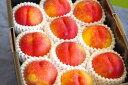 スイートビーナス通販 幻のネクタリン油桃を販売取寄。約8玉〜12玉 山形・他産地