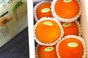 新秋柿(しんしゅうがき)通販 和歌山温室栽培で糖度約18度の柿を販売取寄。約5玉〜約7玉 和歌山産