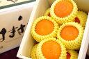 ミニサイズ柑橘はまさき通販 佐賀オリジナルの麗紅柑を販売取寄。約9玉前後