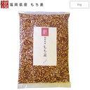 福岡県産 もち麦 1kg 【メール便送料無料 国産 九州産 大麦】