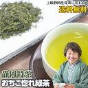 緑茶 訳あり 深蒸し茶 静岡産 静岡茶 日本茶 大容量 130g 送料無料 ポイント消化 おちこ惚れシリーズ