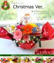 【生花】花 Popキャンディ(プチメッセージ付き)【クリスマス】【クリスマス 花】【送料無料】お祝い