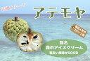 ■沖縄産■アテモヤ ポット苗 森のアイスクリーム 果樹苗木 熱帯果樹 【予約販売】【2017年7月中旬頃お届け予定】