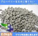 ブルーベリーの肥料 (ブルーベリーを丈夫に育てたい) (2.0kg) 【カルシウム 配合肥料】 【資材】ブルーベリー 肥料 ひりょう ツツジ科 全般 blueberry