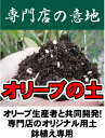 オリーブの土 (肥料入り) (14L) 【資材】 オリーブ 鉢植え専用 培養土●●