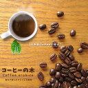 コーヒー マウンテン インテリア グリーン
