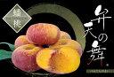 桃の苗木 ネクタリン ばんとう 弁天の舞1年生 接ぎ木 苗 蟠桃 果樹苗 もも