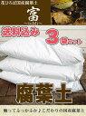 ■送料込み■ 腐葉土 『富』 【3袋セット販売】(42L)【資材】 土壌改良材 土壌改良剤 【北海道、沖縄、離島不可】