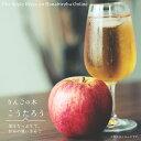 りんご 苗木 こうたろう PVP 1年生 接ぎ木 苗 果樹 果樹苗木