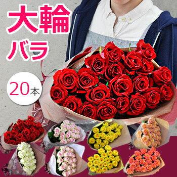 花径10cm!大臣賞バラの花束(20本〜)誕生日、結婚記念日 還暦のお花のプレゼントに退職祝い(送別会)結婚祝い 開店のお祝いやホワイトデー プロポーズに女性へ。赤 ピンク イエロー(黄色) オレンジ 紫の薔薇(ばら)をフラワーギフトに 送料無料 2016