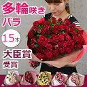 スプレーバラの花束 誕生日 結婚記念日のプレゼントに妻へ。バレンタイン 退職祝い プロポーズに。薔薇(ばら)を還暦祝いのギフトに 送料無料(15本)