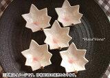 カエデ桜志野珍味5個セット