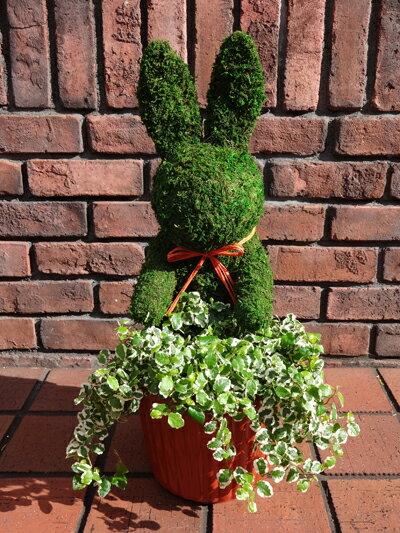 ガーデニングガーデンモスアニマル寄せ植えグリーンスタンドプランターギフトテラコッタ花遊びモスアニマル