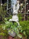 ガーデニング ガーデン うさぎ ラビット バスケット寄せ植え 置物 樹脂アニマル 動物 雑貨 【花遊び】『ガーデンバスケ・ラビット』【2月中旬のお届け予定です】