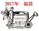福袋 ガーデニング ガーデン【花遊び】『2017年もガーデニングを楽しんで〜 happy福袋♪』