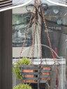 ジョウロ ブリキ アイアン オーナメントハンギング ガーデニング ガーデン 雑貨【花遊び】『アンティーク♪ハンギングバスケット』