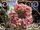ガーデニング雑貨 ガーデン リース 玄関 フラワー【花遊び】『ハイドランジア・ピンク』